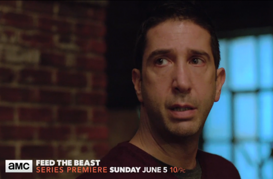 david schwimmer feed the beast