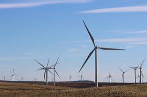 Wind farm turbines (Shutterstock)