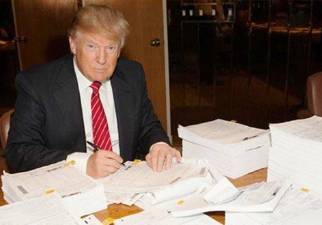 trump tax return twitteredited