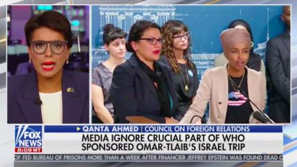 Fox News Guest: Reps. Tlaib, Omar Suffer from 'Holocaust Envy'