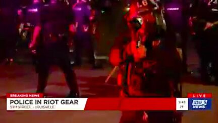 Louisville Police Repeatedly Shoot Pepper Pellets at TV Crew Live on Air