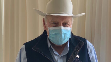 dick cheney face mask