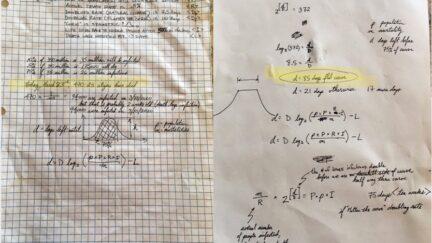 Massie Flatten the Curve Algebra