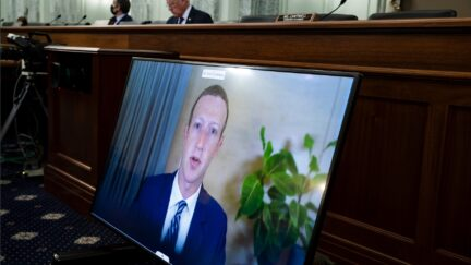 Mark Zuckerberg Michael Reynolds-Pool/Getty Images