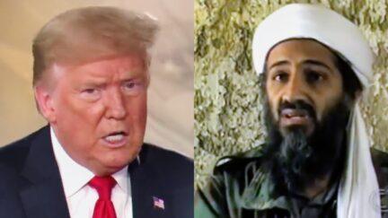 Donald Trump Osama bin Laden splitscreen