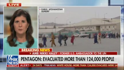 Nikki Haley Decries 'Softball' Questions to Pentagon on Afghanistan