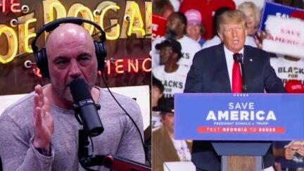 Joe Rogan Donald Trump split image