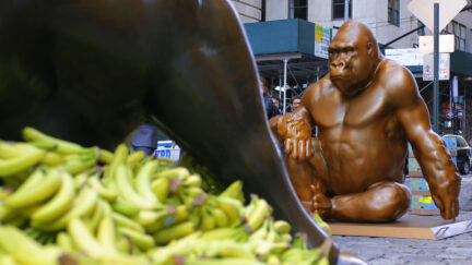 Harambe Statue in NYC 1