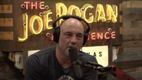 Joe Rogan on the Joe Rogan Experience